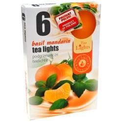 Čajové svíčky - Mandarinka - 6 ks - Admit