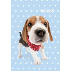 Dětský ručník 30x50cm - Dog