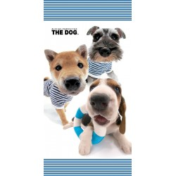 Osuška - The Dog, Námořníci