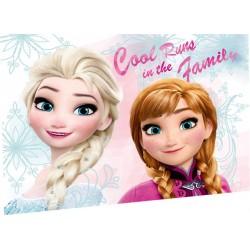 Dětský ručník 30x40cm - Ledové Království Cool