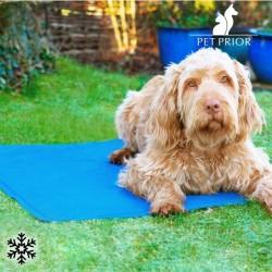 Chladivý kobereček pro domácí mazlíčky - Pet Prior