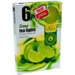 Čajové svíčky 6 kusů - Limetka