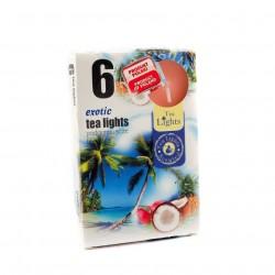 Čajové svíčky - Exotické ovoce - 6 ks - Admit