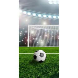 Osuška - Fotbalový míč - 140 x 70 cm - Detexpol
