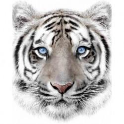 Deka z mikroflanelu - Bílý tygr - 150 x 120 cm - Jerry Fabrics