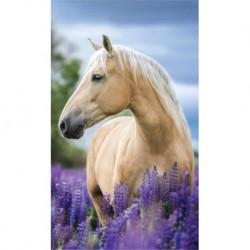 Ručník - Kůň v levanduli - 50 x 30 cm - Detexpol