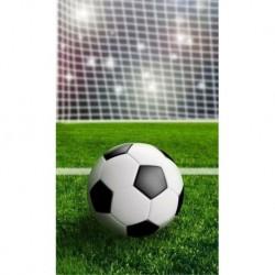 Ručník - Fotbalový míč - 50 x 30 cm - Detexpol