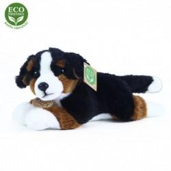 Plyšový bernský salašnický pes - 23 cm - Rappa
