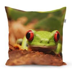 Polštářek s potiskem - Zelená žába - Sablio